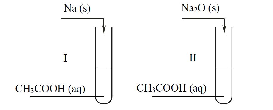 Właściwości i reakcje kwasu octowego.