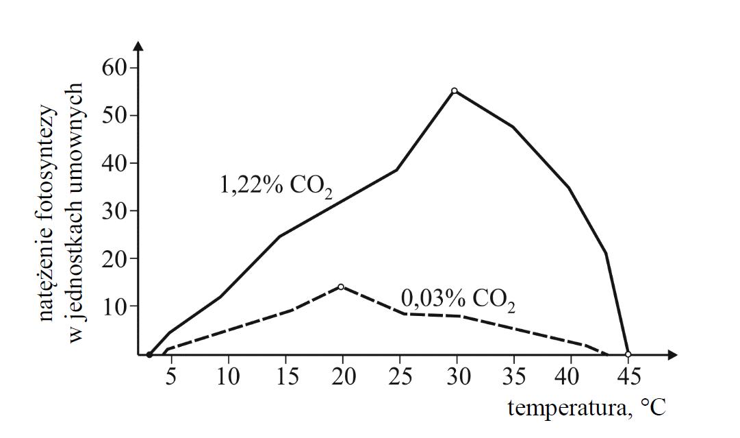 Wpływ temperatury na natężenie fotosyntezy u pewnej rośliny przy normalnym stężeniu CO2.