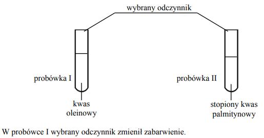 W celu odróżnienia kwasu oleinowego od stopionego kwasu palmitynowego wykonano doświadczenie, którego przebieg przedstawiono na schemacie.