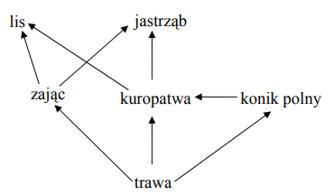 Na schemacie przedstawiono fragment sieci pokarmowej.